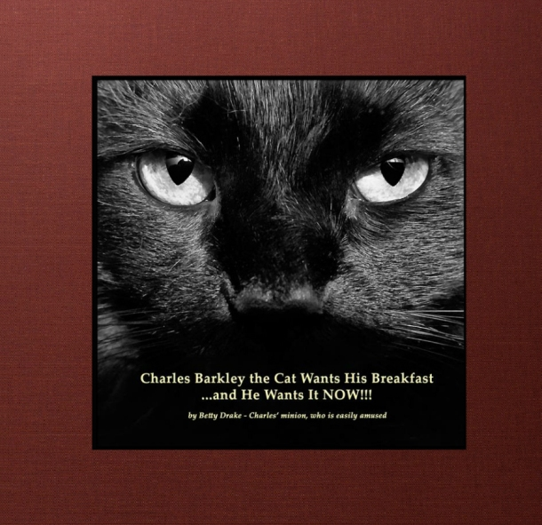 drake-charles-barkley-the-cat-book-1